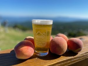 A pint of Beech Mountain Brewing Co. Small Batch Release peach and apricot Brett ale. The pint is positioned around peaches overlooking the mountains.